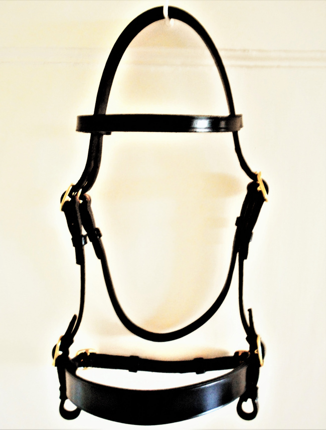 Pony Tack Specialist In Hand Show Equipment bridles